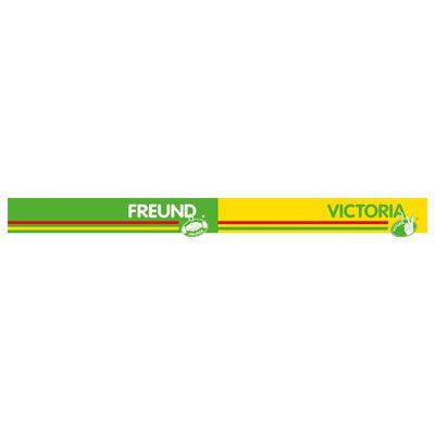 Freund-Victoria-Logo